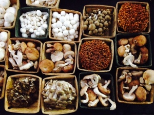 LA Funghi mushrooms, Culver City farmers market