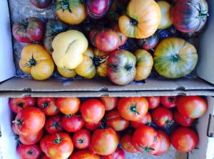 Heirloom Tomatoes. Culver City farmers market. I used the Purple Cherokee variety.
