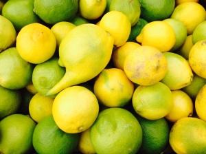 Eureka lemons. La Cienega farmers market