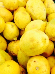 Lemons. La Cienega farmers market