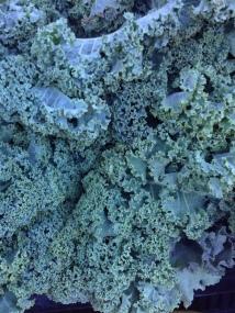 Kale. La Cienega farmers market