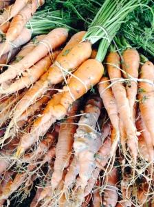 Carrots. Plummer Park farmers market