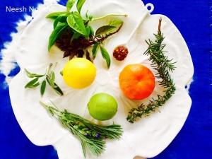 Schug, basil, lemon, lime, mandarin orange, rosemary, lavender, sage for infusing oils