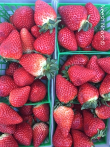 Strawberries. La Cienega Farmers Market, Los Angeles