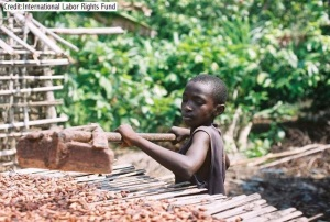 Child cocoa worker. Photo courtesy of Fair Trade Judaica