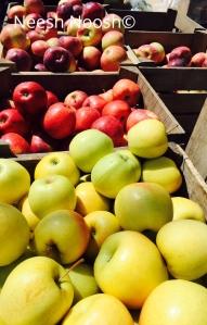 Twin Springs Fruit Farm, Takoma Park, MD Farmers Market