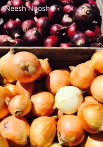 Onions from Twin Springs Fruit Farm, Takoma Park, MD farmers market