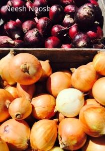 Onions from Twin Springs Fruit Farm, Takoma Park, MD farmers market