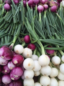 White and purple onions. Bethesda, MD Farmers Market