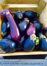 Eggplants. Potomac Farm Market, Cabin John, MD