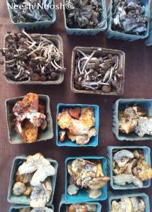 Mushrooms. Bethesda, MD farmers market